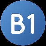 học lái xe b1